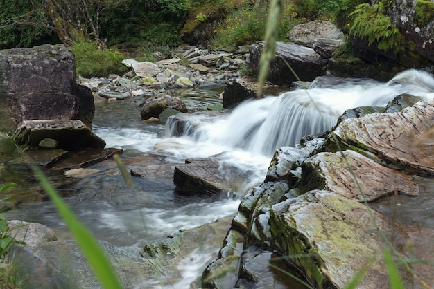 Chiuda sulle pietre del fiume della montagna con il flusso dell'acqua congelato di esposizione lunga