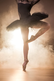 Chiuda sulle scarpe del tutu e del pointe della ballerina