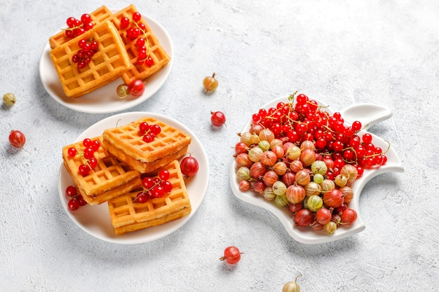 Cialde belghe quadrate con frutti di loquat e miele