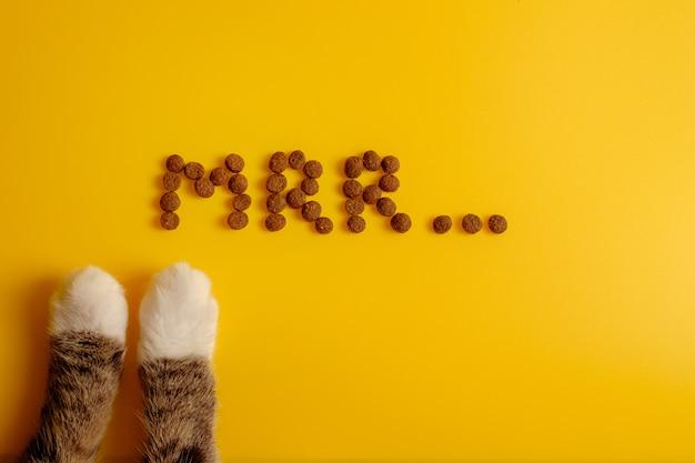 Cibo per gatti sul pavimento giallo presentato nella parola di fusa del gatto, vista superiore di mrr, zampe del gatto