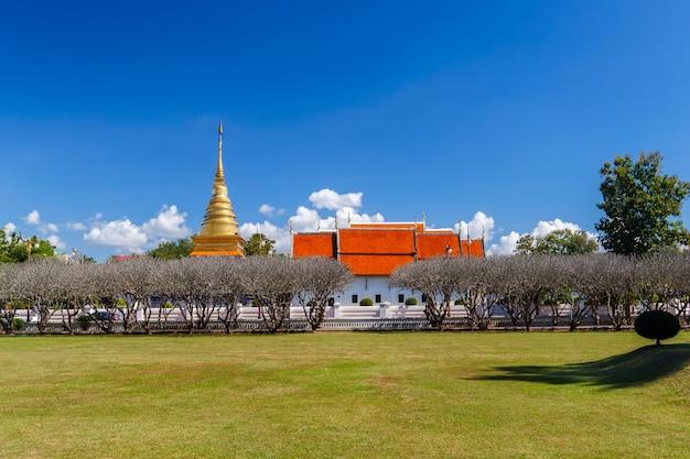 Cielo luminoso con campo in erba nel museo nan di fronte alla pagoda dorata di wat phra that chang kham
