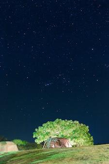 Cielo notturno con stella in cima alla montagna
