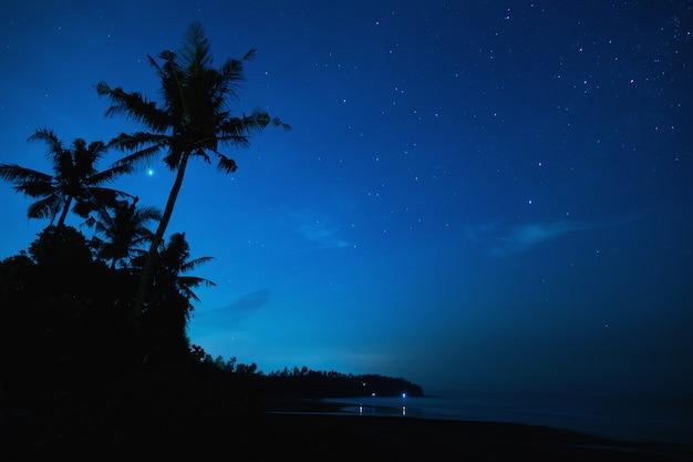 Cielo notturno scenico con molte stelle e palme