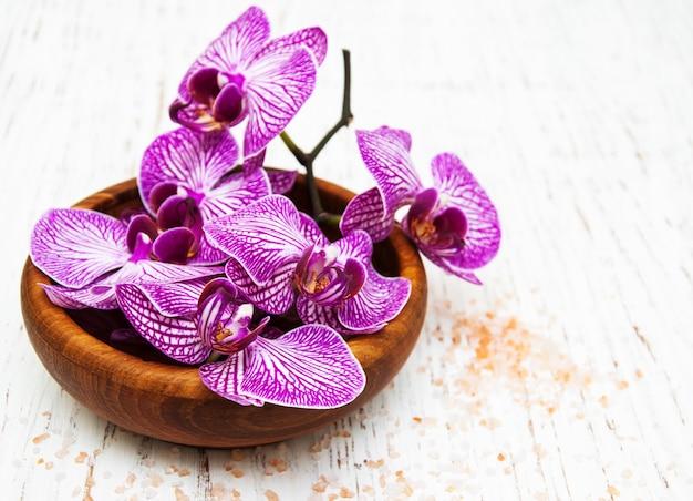 Ciotola con orchidee