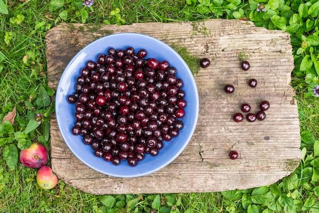 Ciotola di ciliege fresche di giardino
