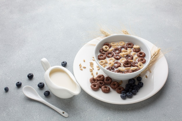Ciotola saporita del cereale del primo piano con latte