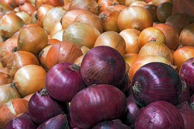 Cipolla bianca e viola sulla stalla del mercato di strada