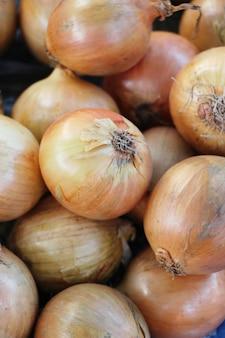 Cipolla fresca per cucinare nel mercato