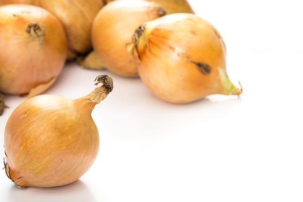 Cipolle fresche