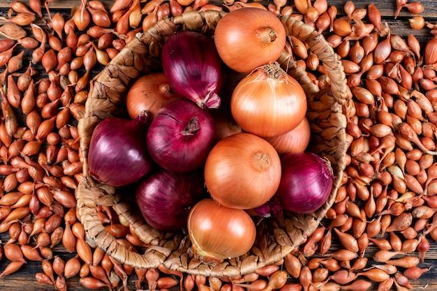 Cipolle in un cestino con le cipolle rosse vista dall'alto su uno scalogno