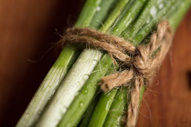 Cipolle verdi organiche. il mazzo di giovani cipolle verdi è legato con filo grosso. supermercato, mercato, vetrina