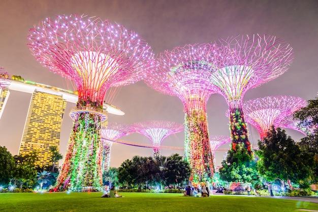 City sands albero colorato turistico