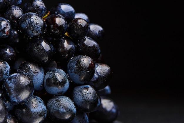 Close-up, bacche di scuro grappolo d'uva in condizioni di scarsa luminosità isolato su sfondo nero, gocce d'acqua