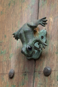 Close-up della maniglia a forma di rana, zona centro, san miguel de allende, guanajuato, messico