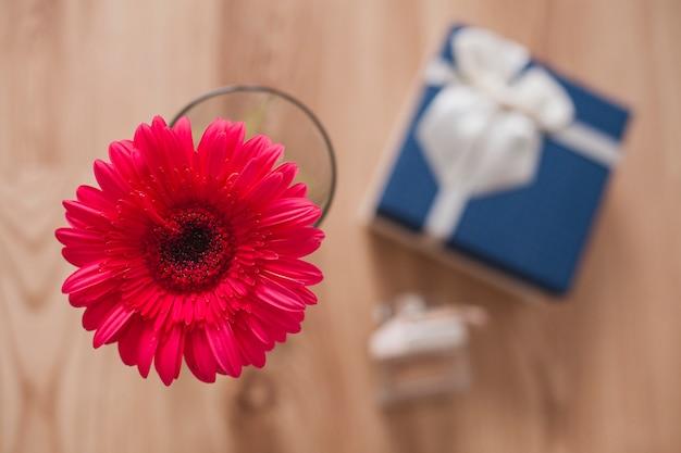 Close-up di fiore con sfondo sfocato