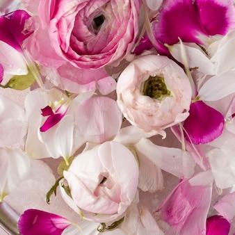 Close-up di fiori che sbocciano