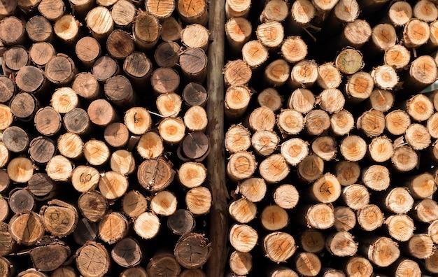 Close up di pile di tronchi di legno in viste di sezione per sfondo, legno secco per materiale di fornitura di costruzione
