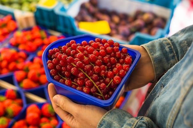 Close-up di una persona in possesso di cassa di ribes rosso in mano