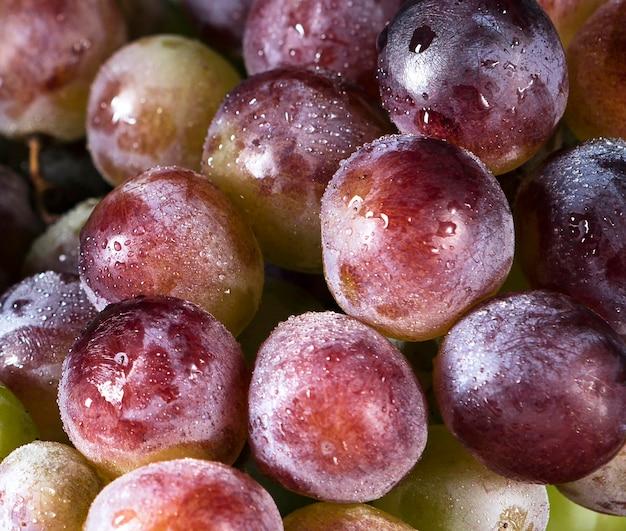 Close-up di uva autunnale con acqua