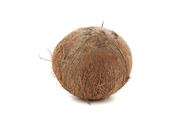 Cocco intero isolato. frutta tropicale
