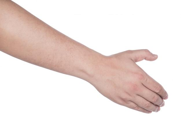 Collezione di mani di donna su sfondo bianco