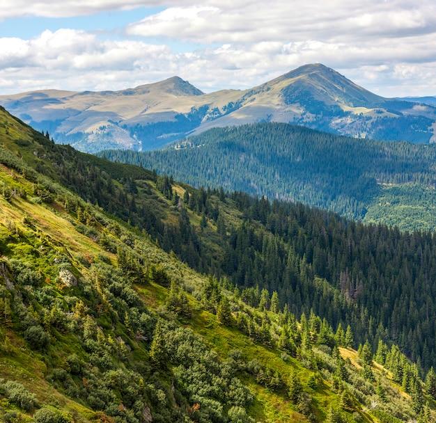 Colline e picchi verdi della montagna carpatica nel giorno soleggiato di estate