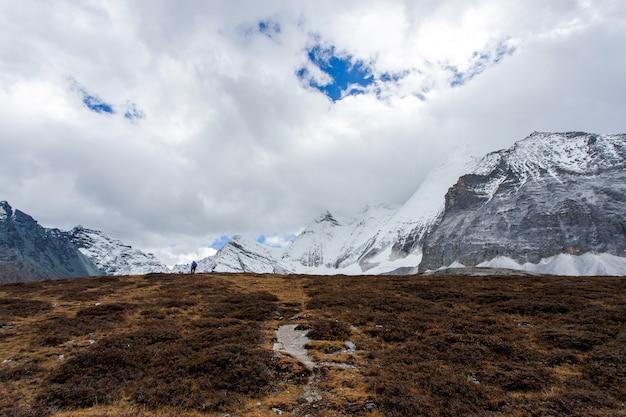 Colourful in foresta di autunno e montagna della neve alla riserva naturale di yading