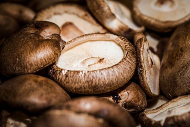 Colpo a macroistruzione di funghi freschi