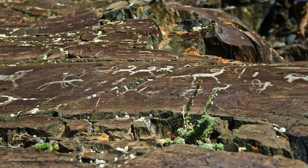 Colpo del primo piano dei disegni sulle pietre degli esseri umani preistorici prima della civilizzazione
