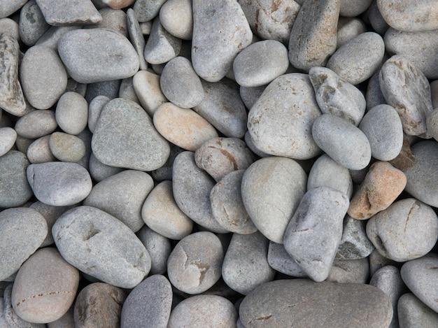 Colpo del primo piano della spiaggia mista di ciottoli