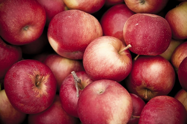 Colpo del primo piano delle mele rosse sopra a vicenda