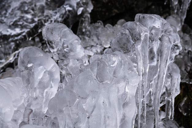 Colpo del primo piano di bellissimi ghiaccioli sugli alberi