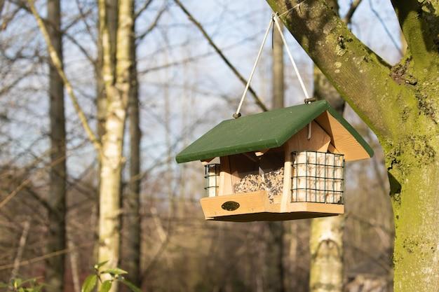 Colpo del primo piano di una mangiatoia per uccelli appesa a forma di casa