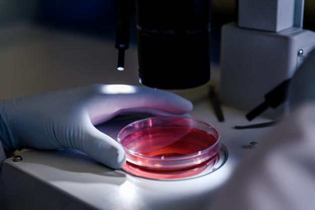 Colpo del primo piano di una persona che studia le particelle di coronavirus con un microscopio