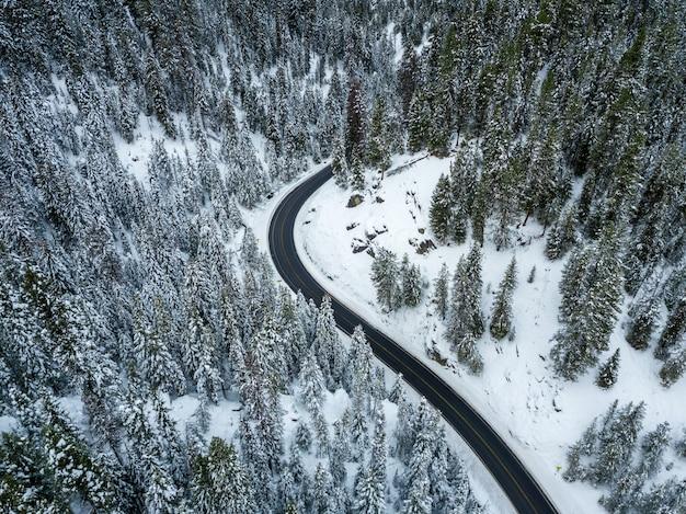 Colpo di alto angolo di una strada tortuosa in una foresta di abeti rossi coperti di neve in inverno