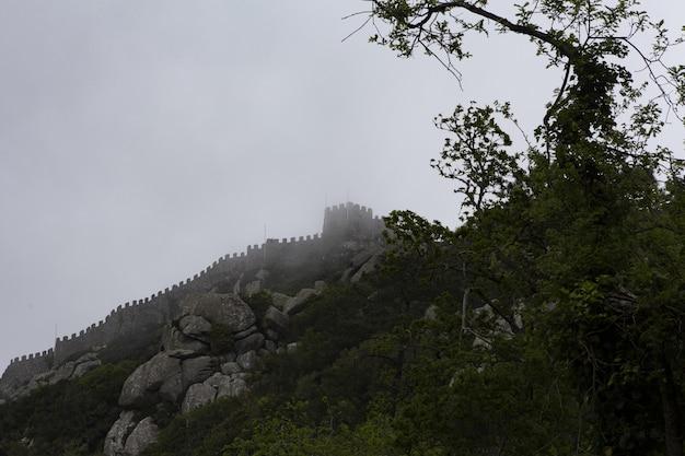 Colpo di angolo basso di un bellissimo castello su una scogliera nebbiosa sopra gli alberi