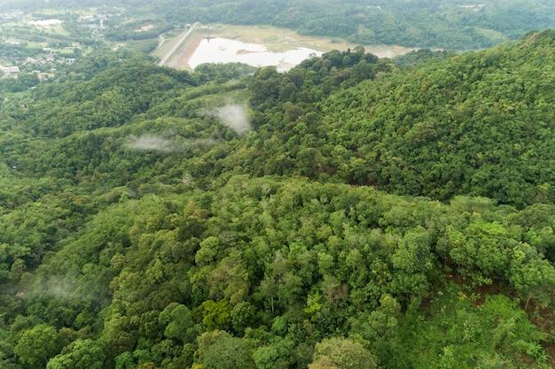 Colpo di drone vista aerea della foresta pluviale tropicale di montagna