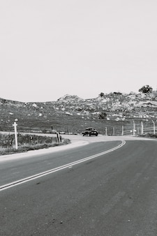 Colpo di gradazione di grigio verticale di una strada della campagna
