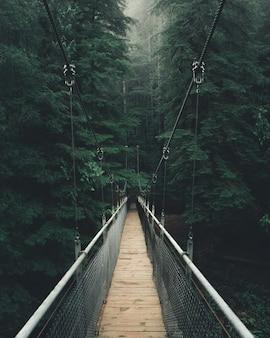 Colpo di punto di vista di uno stretto ponte sospeso in una fitta bella foresta