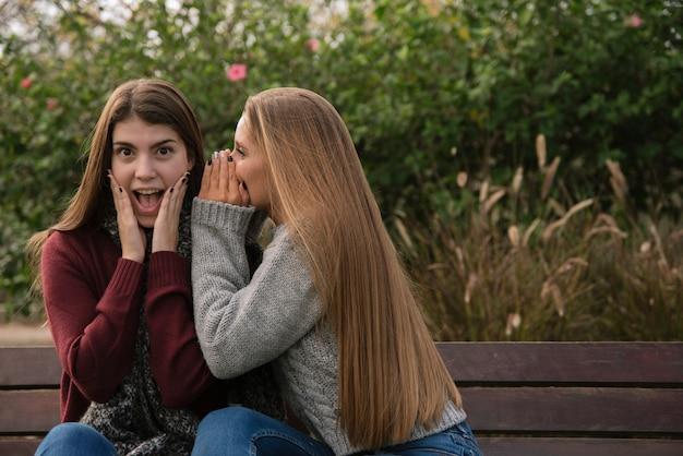 Colpo medio di due donne che chiacchierano nel parco