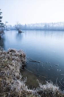 Colpo verticale ad alto angolo di erba secca e alberi spogli vicino al lago coperto di nebbia in inverno
