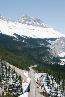 Colpo verticale dell'angolo alto di un'autostrada nella foresta vicino alle montagne al parco nazionale di banff