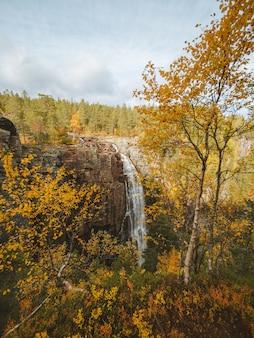 Colpo verticale di una cascata circondata da molti alberi con i colori autunnali in norvegia