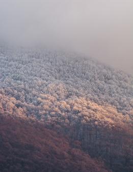Colpo verticale di una montagna densa e un cielo nebbioso