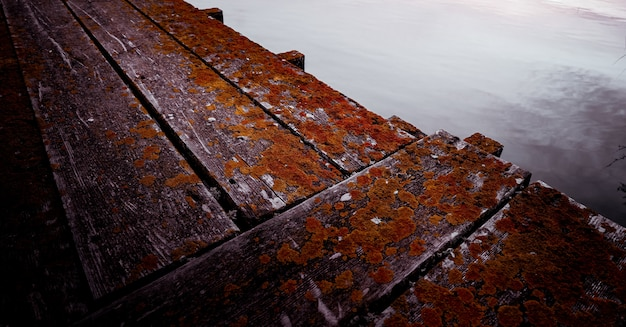 Colpo vicino di una via di legno vicino all'acqua con la mancanza che cresce su