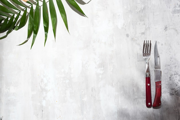 Coltello e forchetta per mangiare e palme lascia sullo sfondo grigio pietra, vista dall'alto.