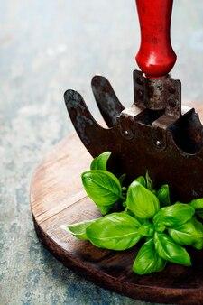 Coltello mezzaluna vintage taglio erba