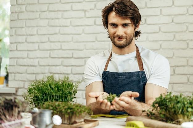 Coltivatore attraente dell'uomo barbuto che si prende cura dei germogli di microgreens