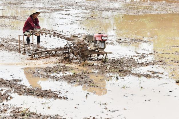 Coltivatore che ara nel giacimento del riso