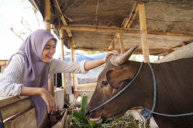 Coltivatore femminile musulmano che alimenta animale nella fattoria tradizionale